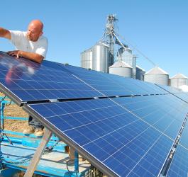 Energia fotovoltaica oferece soluções para o agronegócio
