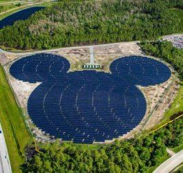 Parques da Disney nos EUA serão abastecidos com energia solar fotovoltaica